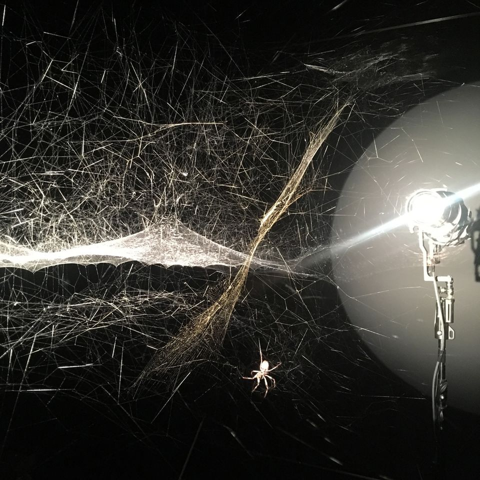 Tomás Saraceno's Hyperweb of the present (2017)