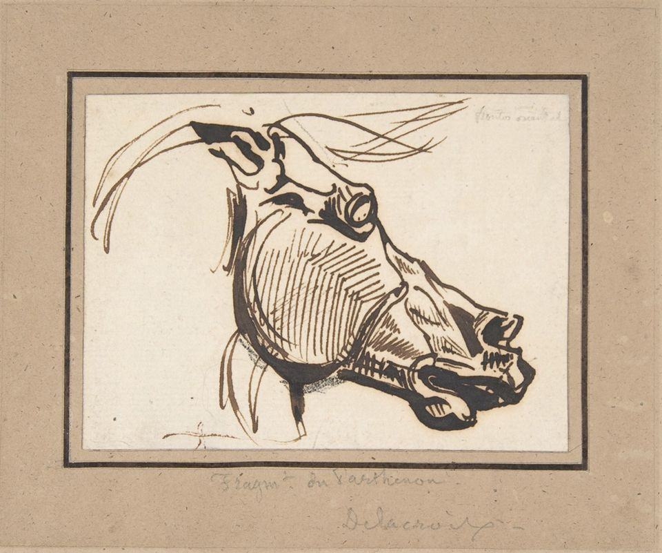 Delacroix's sketch of the horse of Selene from a Parthenon sculpture