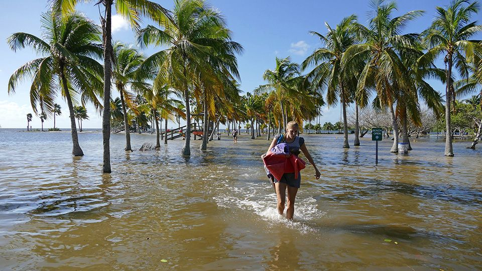 A beachgoer at Matheson Hammock Park, on Old Cutler Road, packs up and leaves for the day once the King Tide took over Monday morning, Oct. 17, 2016. Parts of Matheson Hammock Park were inundated with sea water during the King Tide Monday morning