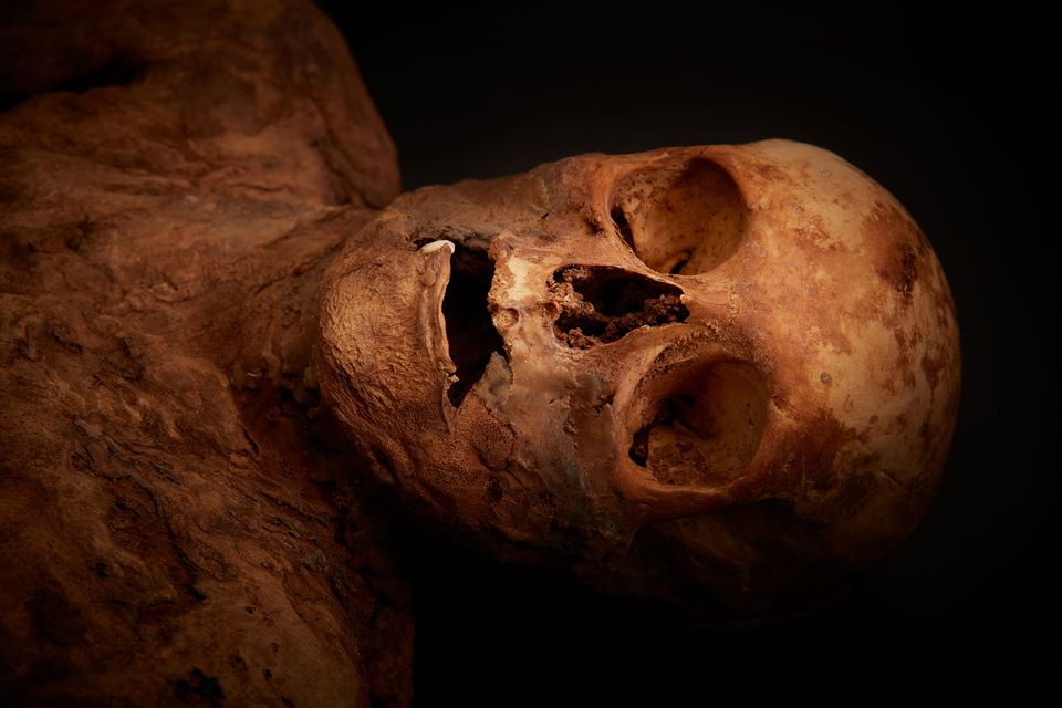 Tests show Basel mummy was ancestor of British foreign minister