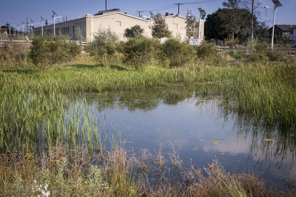 The site of Lacma's new satellite campus in South Los Angeles Wetlands Park