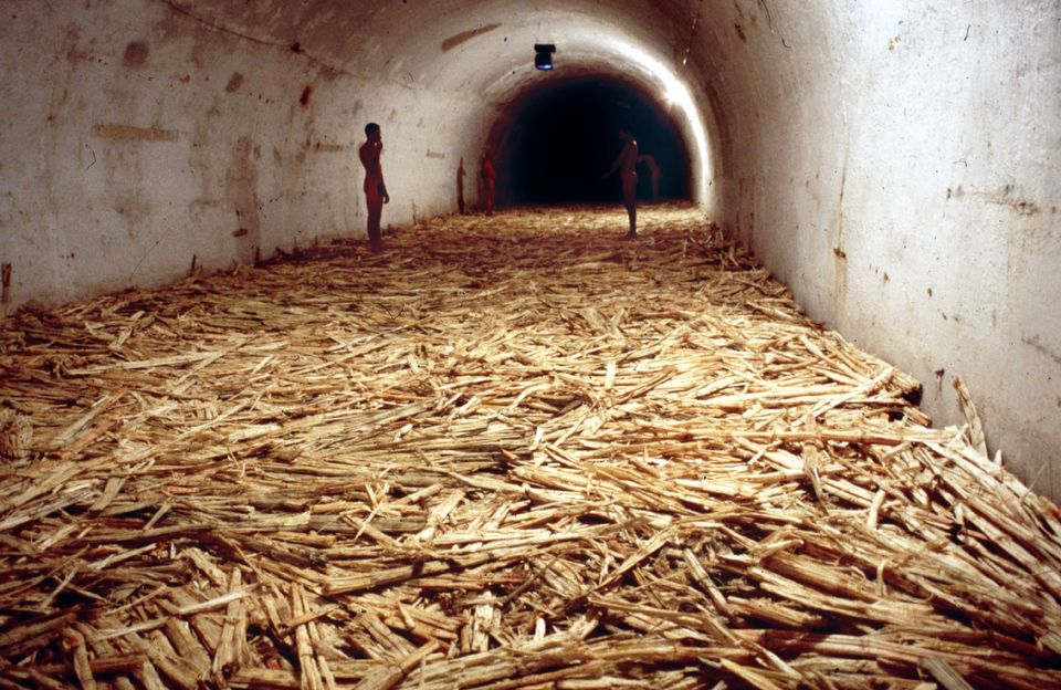 Installation view of Tania Bruguera's Untitled (Havana, 2000), 2000. Sugar cane bagasse, video (black and white, silent), and live performance. 164 x 39 ¼ x 13 1/8 feet.