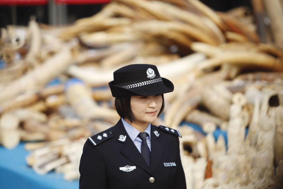 China is closing down ivory carving workshops, factories and shops