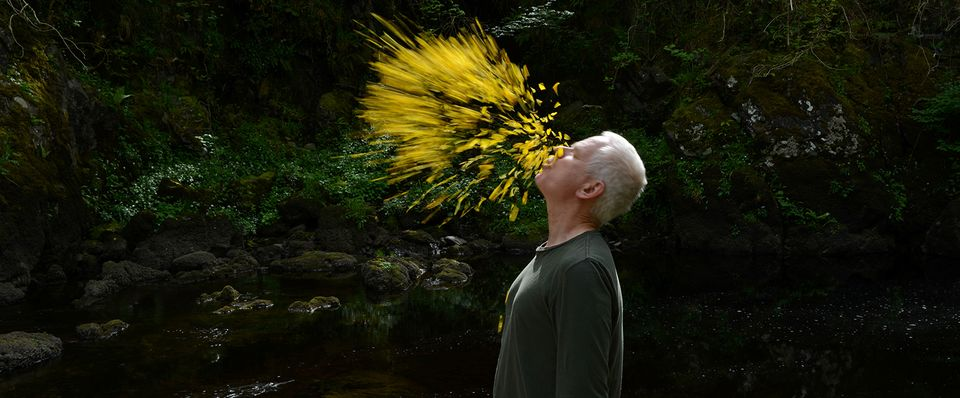 Andy Goldsworthy in Leaning into the Wind, a Magnolia Pictures release