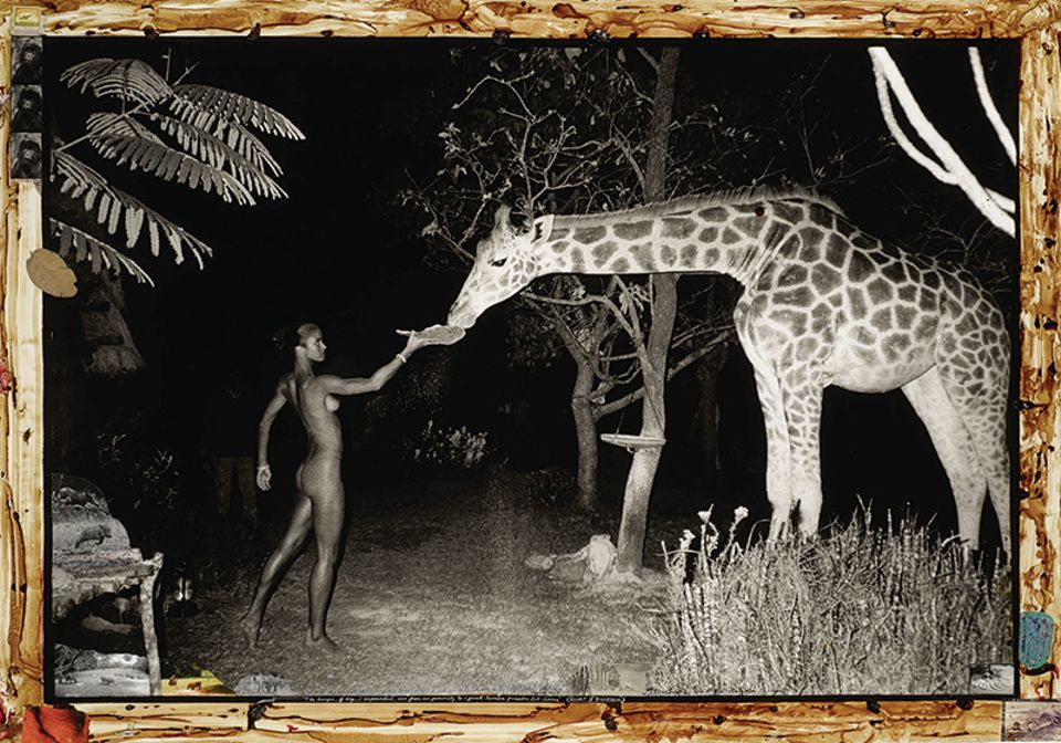 Peter Beard, Hog Ranch Front Lawn, Night Feeder (2:00am) with Maureen Gallagher and Mbuno, Feb. 1987