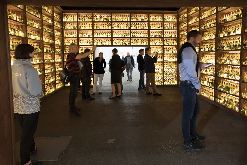 """José Yaque's TUMBA ABIERTA III (2018). Galleria Continua. """"José Yaque, a Cuban artist who lives in Havana, has created what is almost like a whisky bar but with natural materials that one might find in a botanist's [laboratory]. It's a way to encapsulate nature. You can see the different levels of decomposition—the live process that starts from the plants rotting—in each bottle by looking at the colour of the water. The sister piece was shown at the last Venice Biennale."""""""