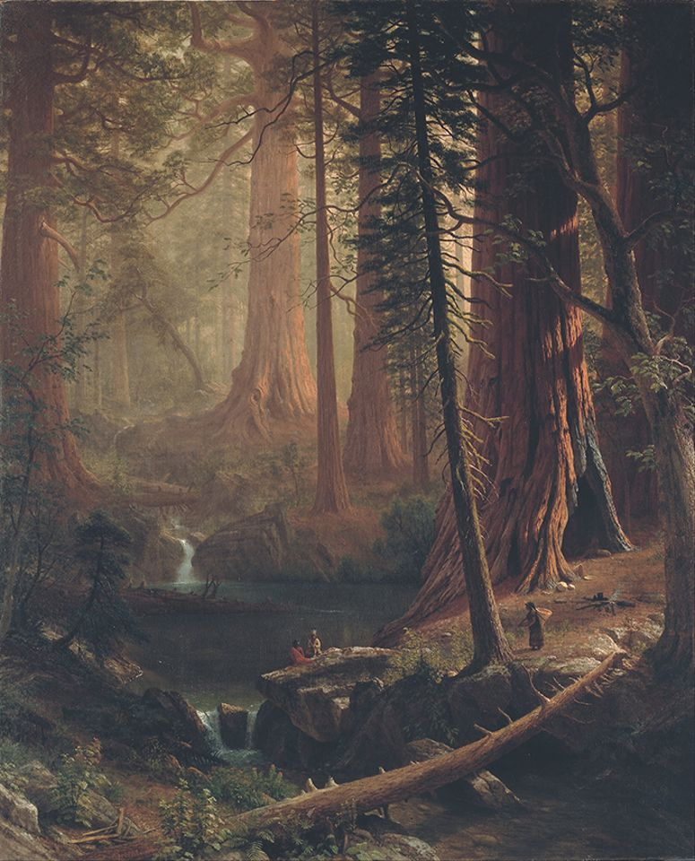 Giant Redwood Trees of California (1874) by Albert Bierstadt is one of the nine works The Berkshire Museum will sell off in the coming months