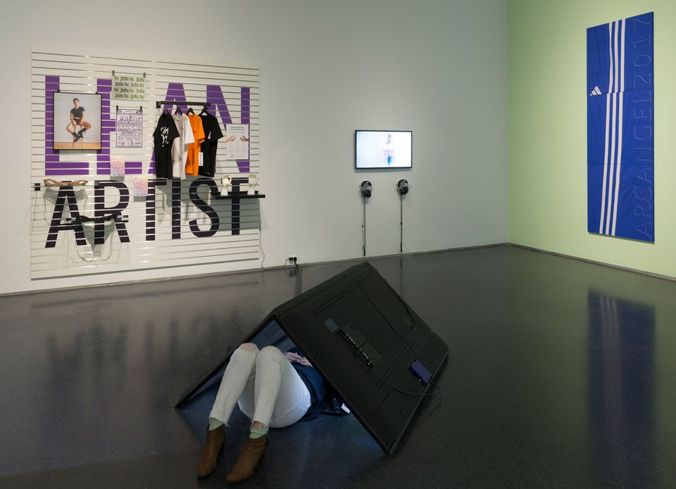 Installation view of I Was Raised on the Internet at the MCA Chicago