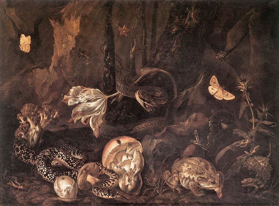 … you're sure of a big surprise: Otto Marseus van Schrieck, Still-Life with Insects, Amphibians, and Reptiles (1662)