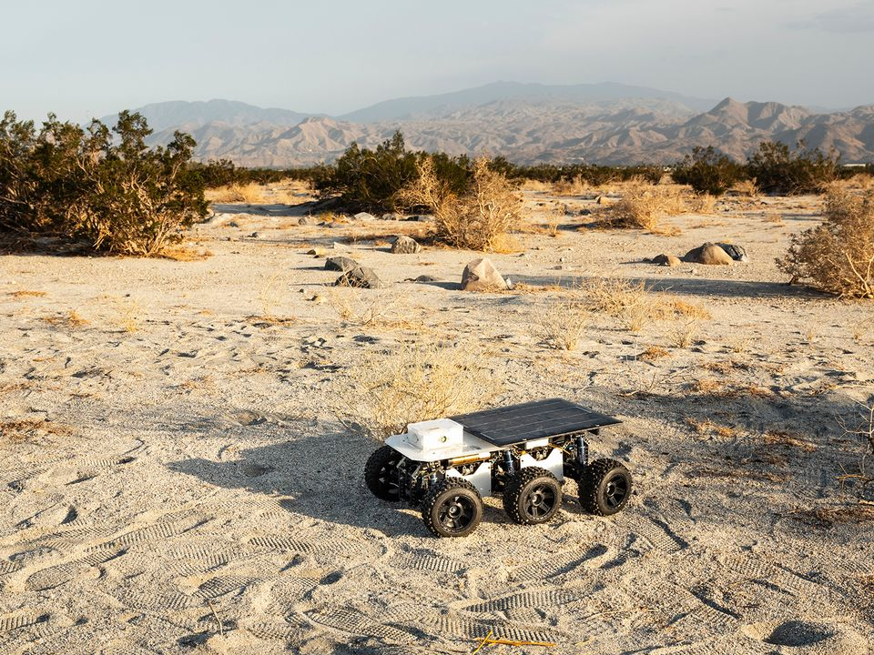 Shybot was found in Palm Springs, California, near Gene Autry Trail