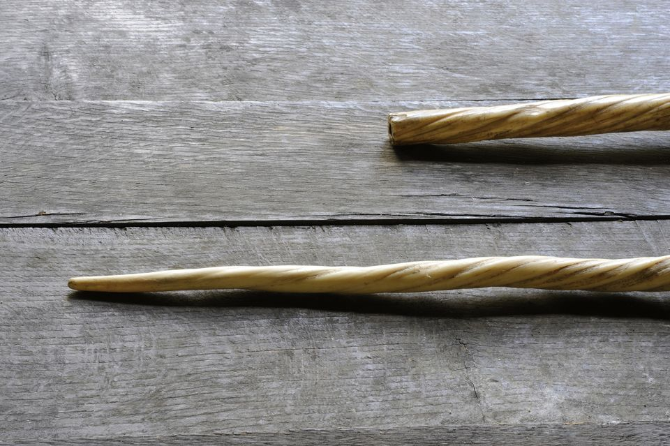 Two unicorn horns, which are actually narwhal tusks from the 13th–15th century
