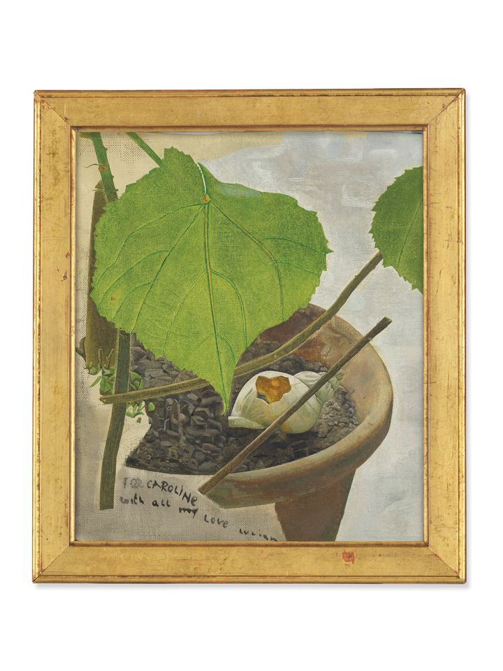 """Lucian Freud, Still Life with Zimmerlinde (around 1950),  Christie's, London, 4 October: Post-War and Contemporary  Art Evening Auction, estimate £400,000-£600,000. House plants play a prominent role in Lucian Freud's paintings, their leaves and stems often used to abstract effect in his compositions. The heart-shaped leaves of the zimmerlinde (or house lime) make repeat performances—in 1948, he depicted his first wife, Kitty Garman, peering out from behind a zimmerlinde branch in the Girl with Leaves. The following year, while still married to Garman, he met Lady Caroline Blackwood to whom this oil on canvas is dedicated: """"For Caroline with all my love Lucian"""" is written on raw canvas at the lower left. Originally in Blackwood's collection, it was bought by the grandmother of the current owner in the 1950s."""