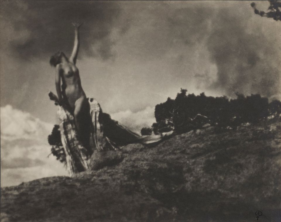 Anne Brigman, Soul of the Blasted Pine, 1906