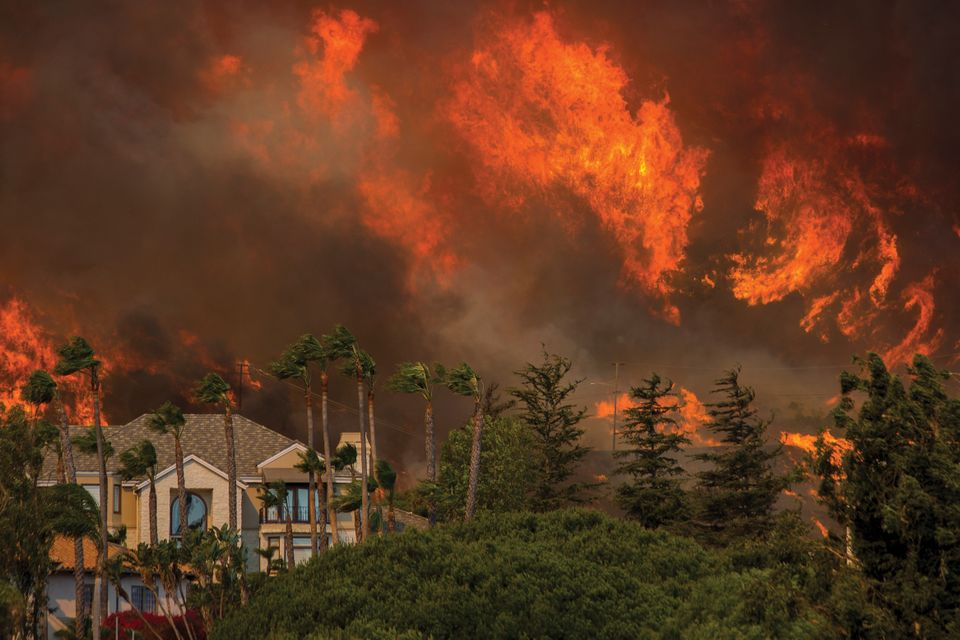 artists homes and work destroyed in california wildfires the art