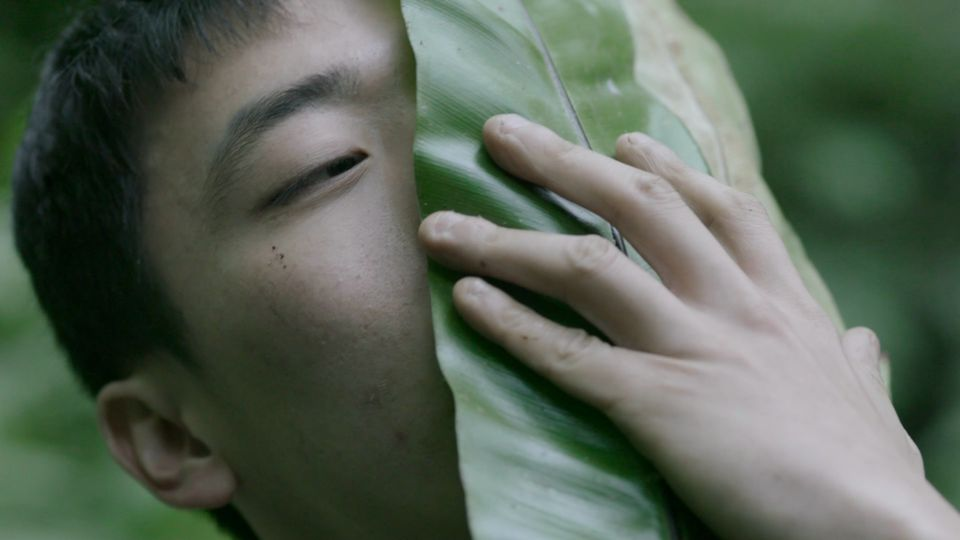 Zheng Bo's video Pteridophilia shows a naked man passionately copulating with plants