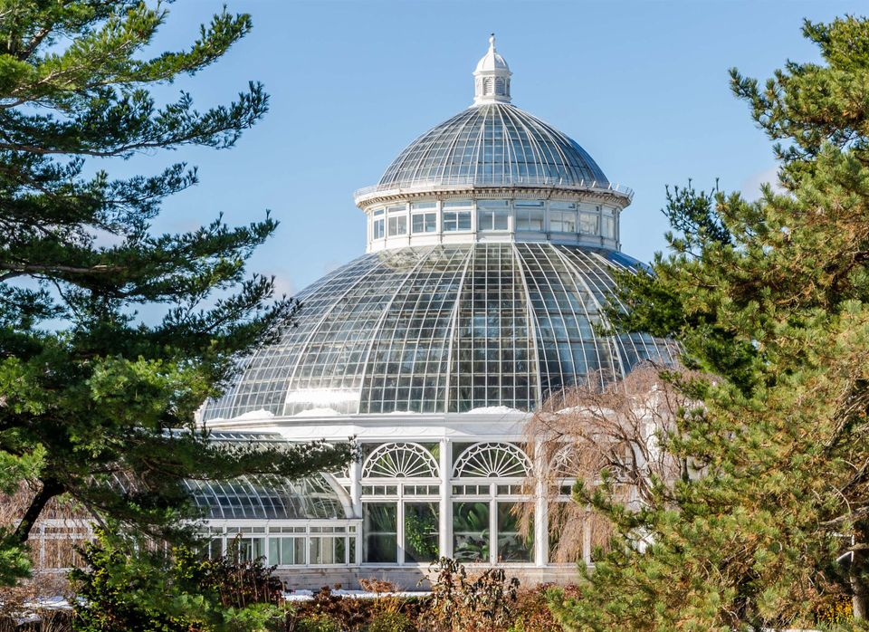 The palm dome of the New York Botanical Garden