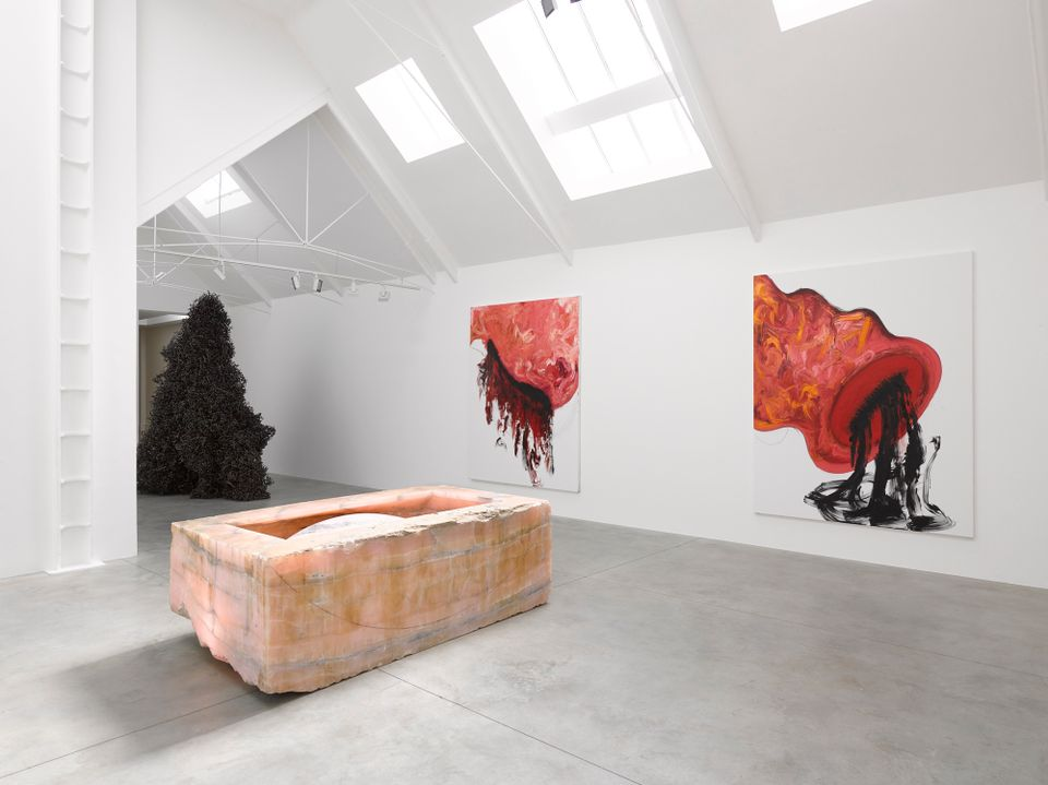 Anish Kapoor unveils new paintings that evoke menstruation